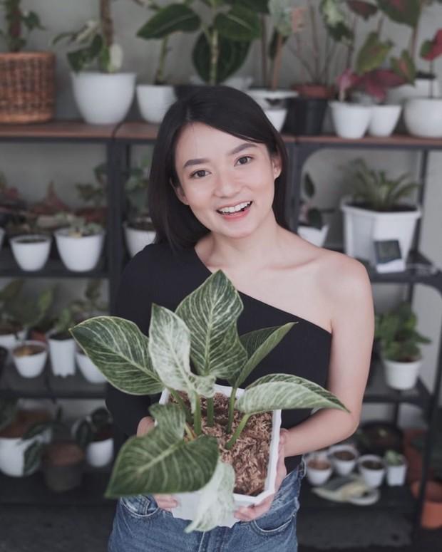 Melalui akun instagram pribadinya istri cantik Fendy Chow ini ini membagikan beberapa foto bersama tanaman hias