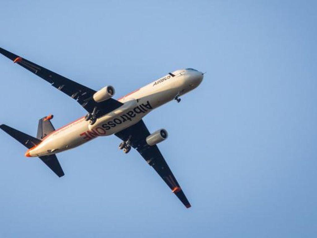 Airbus Uji Coba Pesawat dengan Sayap Mengepak