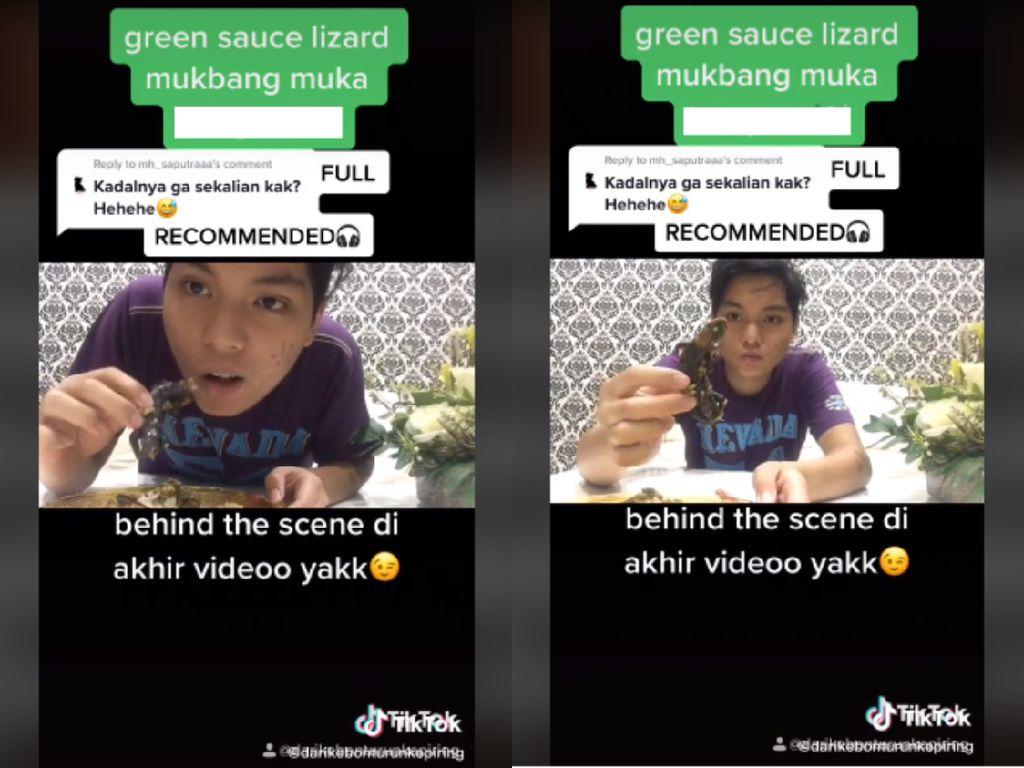 Netizen Ini Mukbang Kadal, Apa Aman Dikonsumsi?