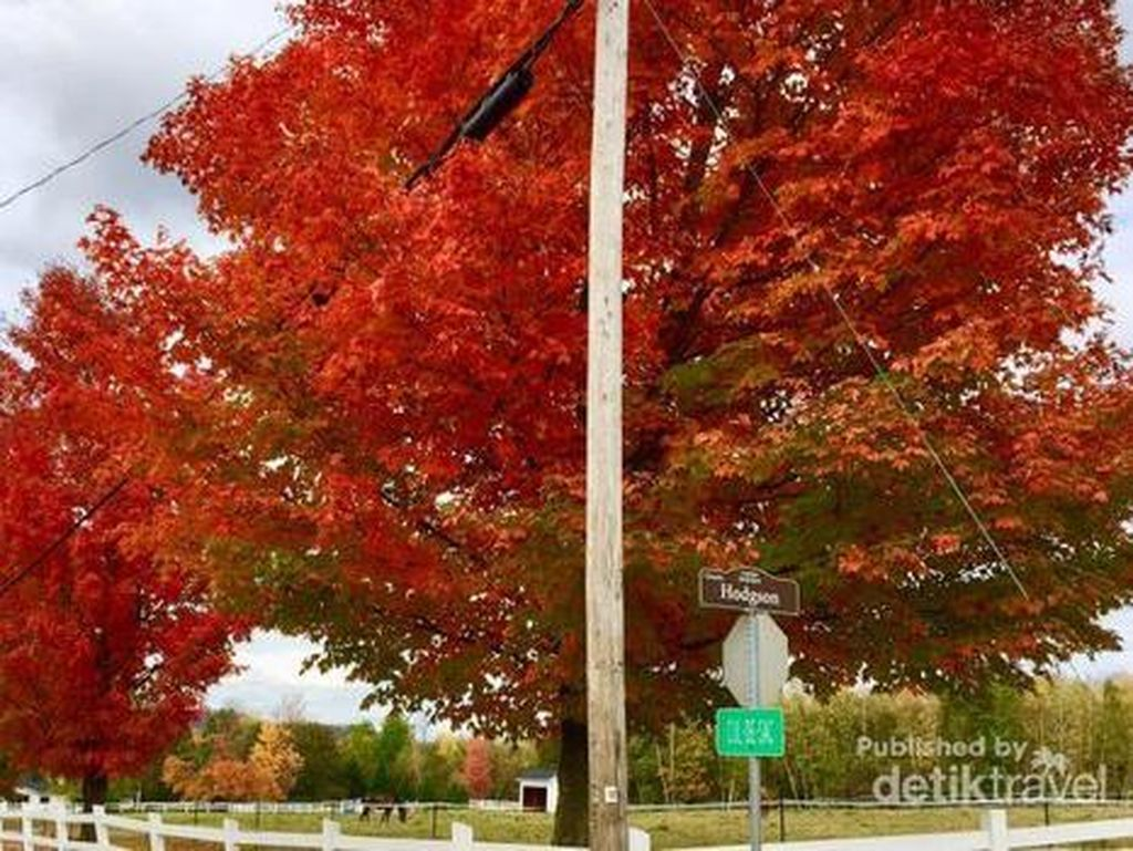 Begitu Cantik Saat Musim Gugur Tiba di Quebec, Kanada