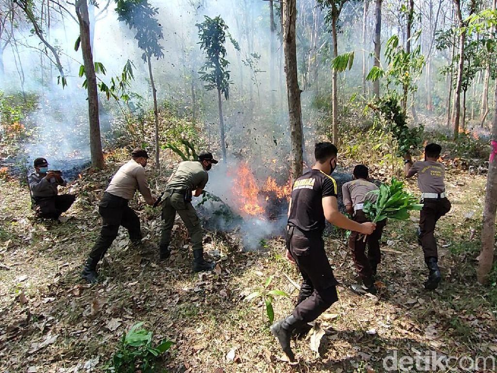 Melihat Simulasi Antisipasi Kebakaran Hutan di Kediri