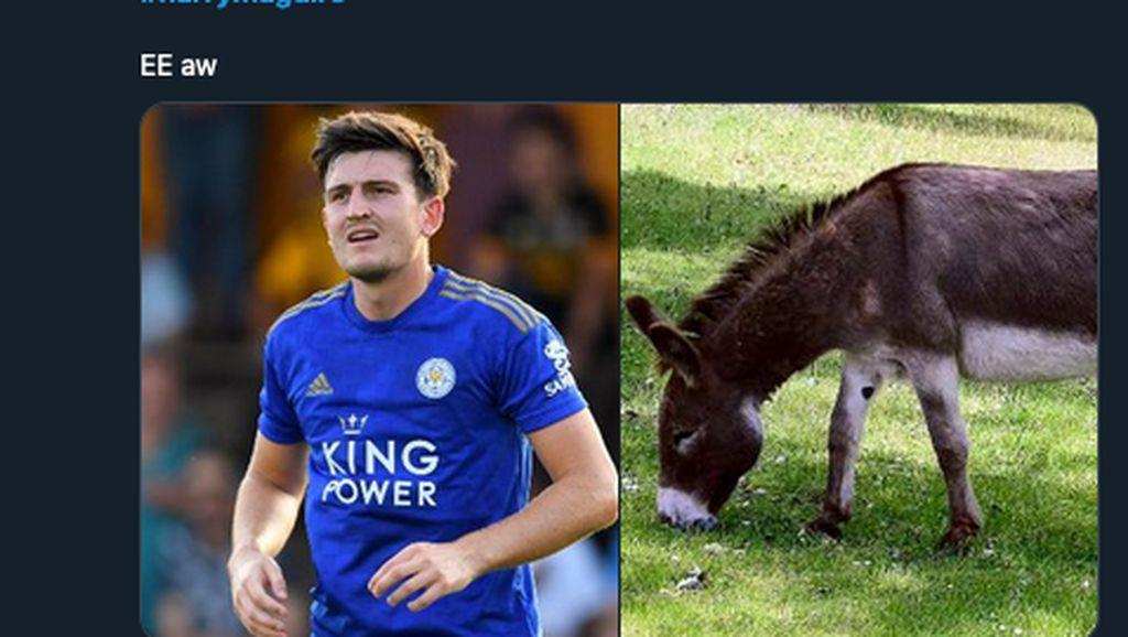 Meme Harry Maguire Habis Kena Ledek, Dibilang Keledai dan Kulkas
