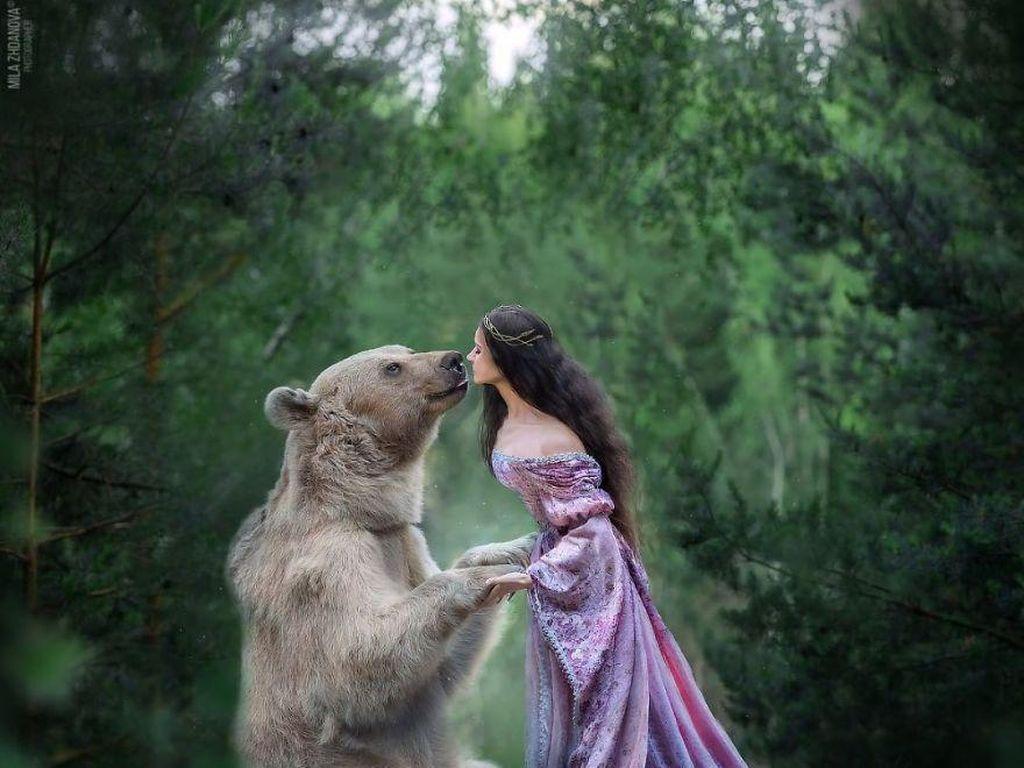 Foto: Beruang yang Posenya Tak Kalah dari Model Profesional
