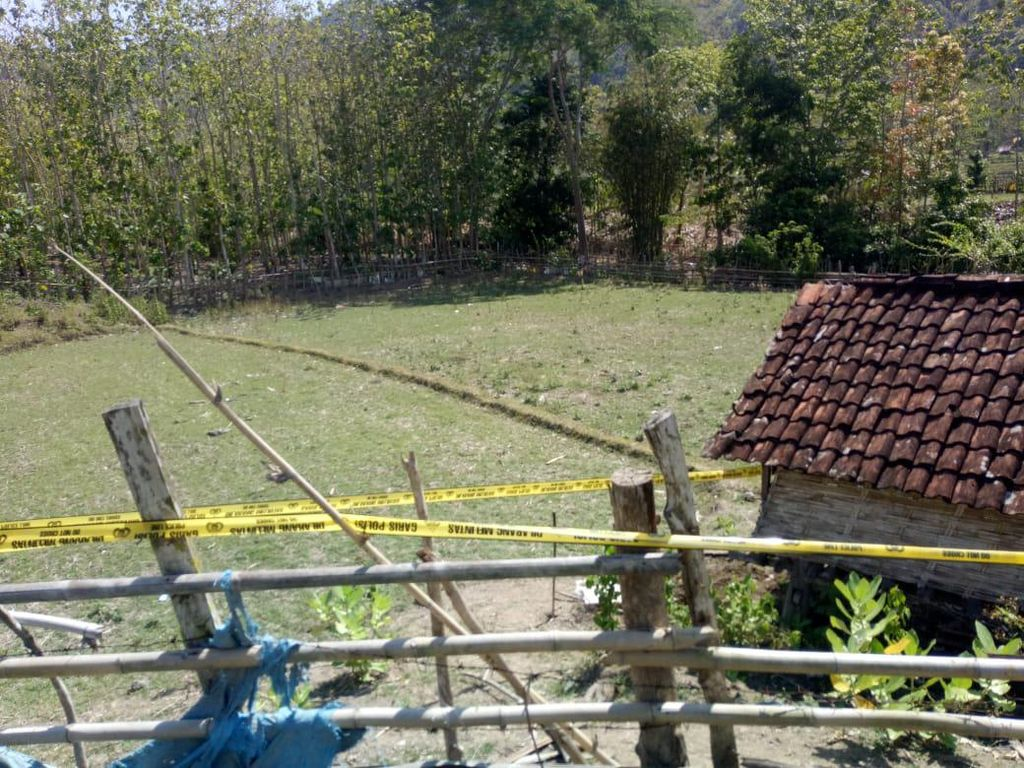 Geger Temuan Mayat Bayi Terkubur di Sumbawa Barat, Pelaku Diburu