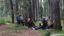 Berakhir Pekan di Taman Hutan Raya Bandung