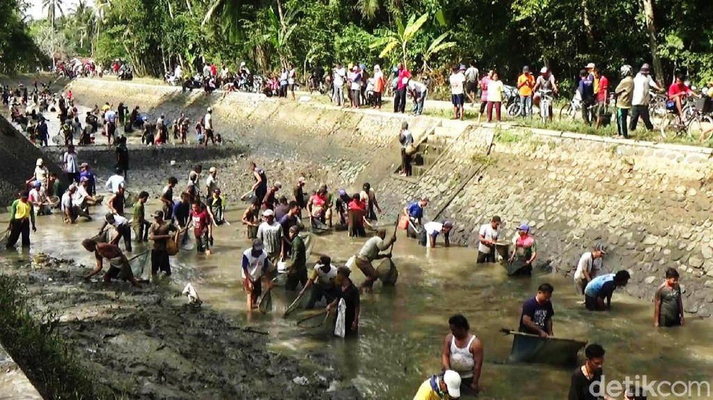 Melihat Tradisi Bersih-bersih Sungai di Purworejo