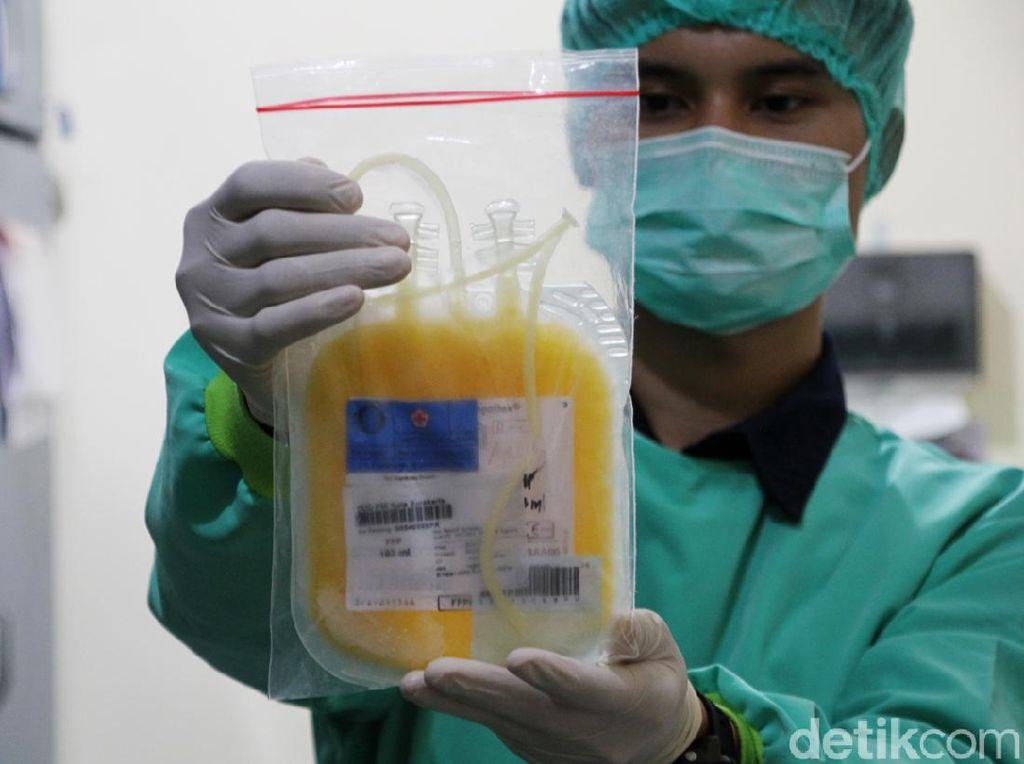 PMI Solo Tambah Stok Plasma Darah Konvalesen