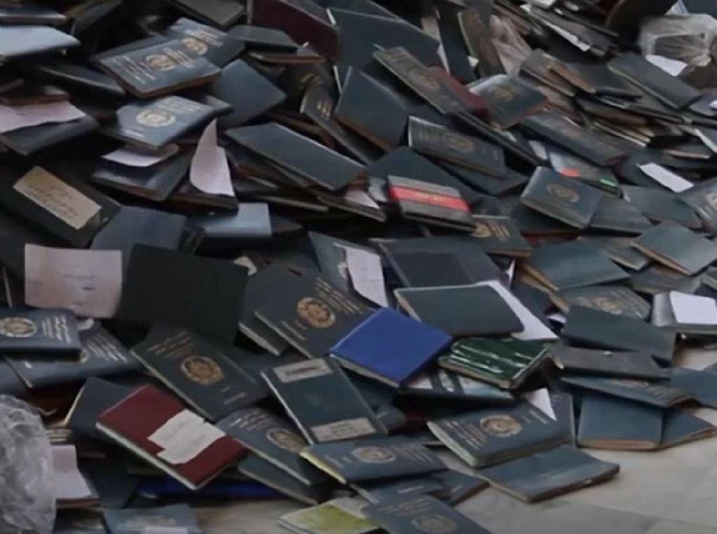 Video Ribuan Orang Berdesakan Urus Visa, 11 Orang Tewas Terinjak