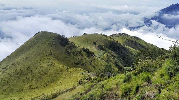 Merbabu Mountain from the Peak of Merbabu