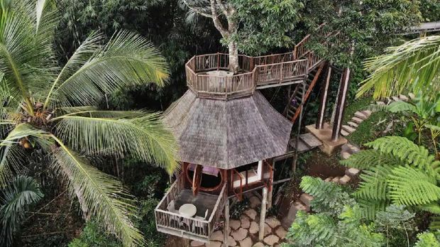 Hobbit Treehouse nested in tropical jungle w/ view