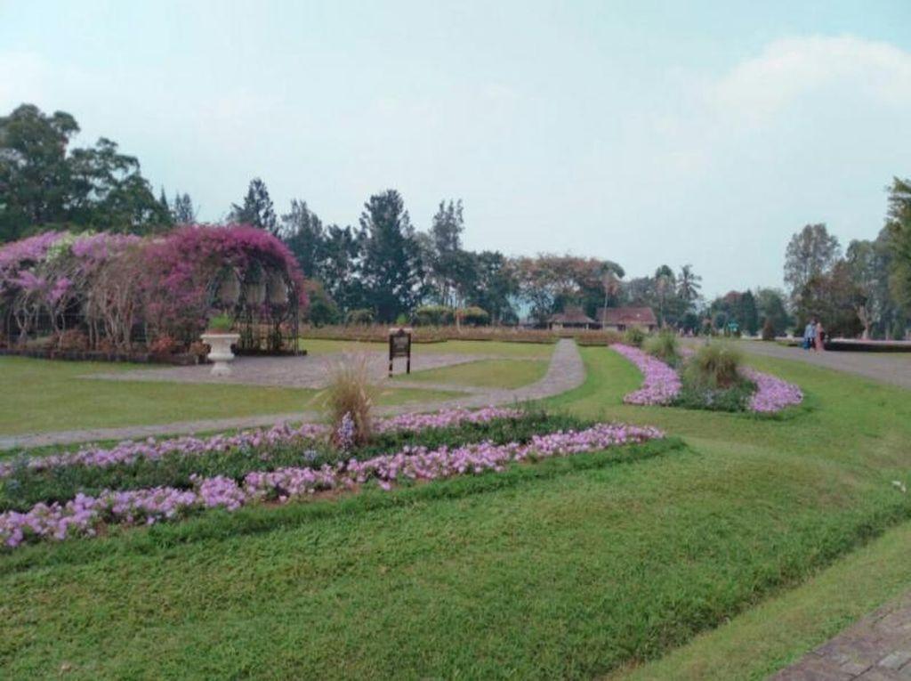 Cantik Nih, Taman Bunga Nusantara di Cianjur