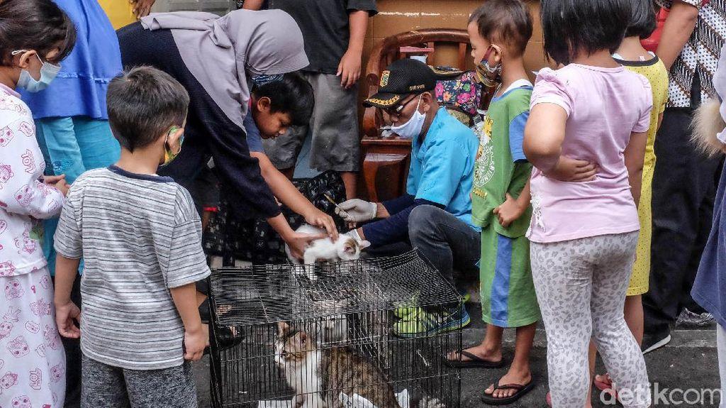 Dinas KPKP Jakarta Gerilya Vaksin Rabies Gratis