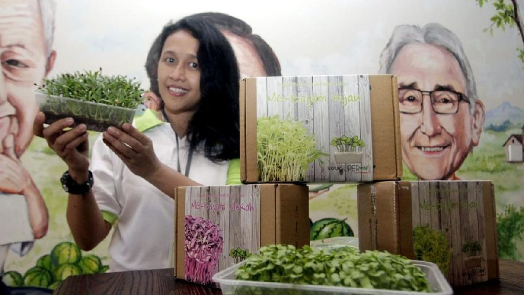 Budidaya Sayur Super Mini di Masa Pandemi