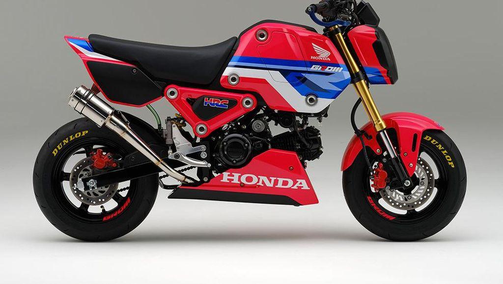 Tampil Berani, Ini Penampakan Honda Grom Versi HRC
