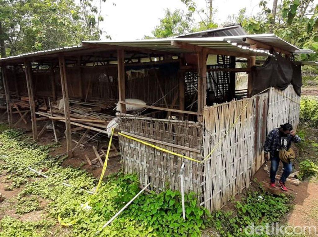 Penampakan Kandang Ayam yang Jadi Lokasi Pembunuhan Sadis Yulia