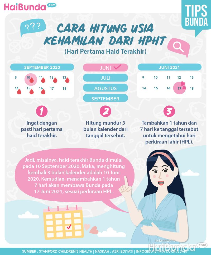 Infografis kehamilan