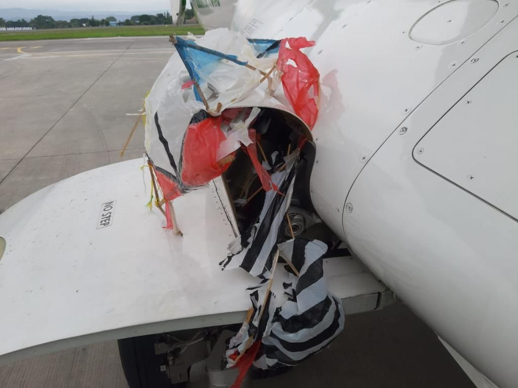 Pesawat Takut Burung hingga Layangan, Ini Penjelasan Pilot