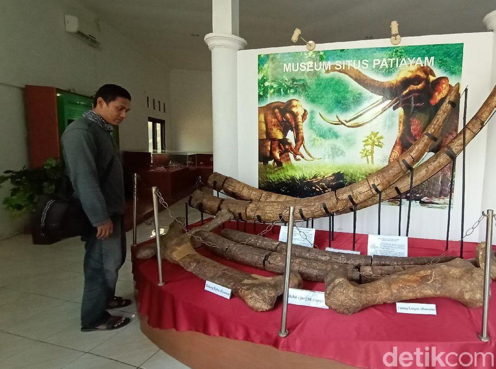 Museum Kretek dan Purbakala Patiayam Kudus Cocok Jadi Wisata Edukasi