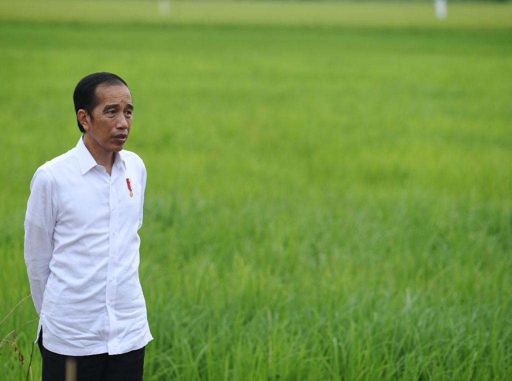 30 Ribu Ha Lahan di Sumut Bakal Ditanami Kentang hingga Bawang Merah