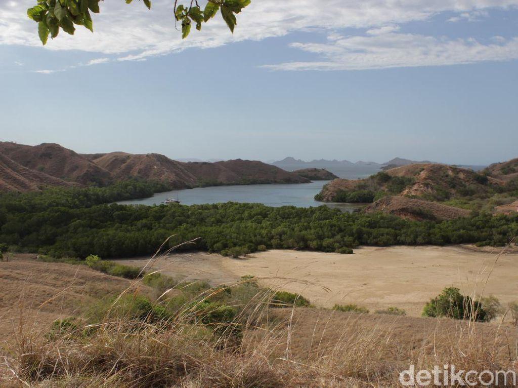 3 Fakta Proyek Jurassic Park di Pulau Rinca