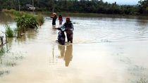 Sungai Cipanje Sukabumi Meluap Rendam Sawah dan Pemukiman