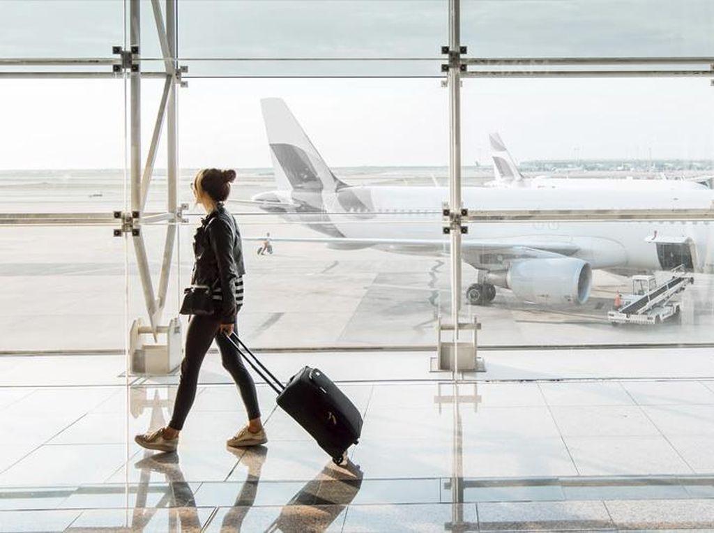 Ini Barang Paling Nyeleneh yang Ditemukan di Bandara AS