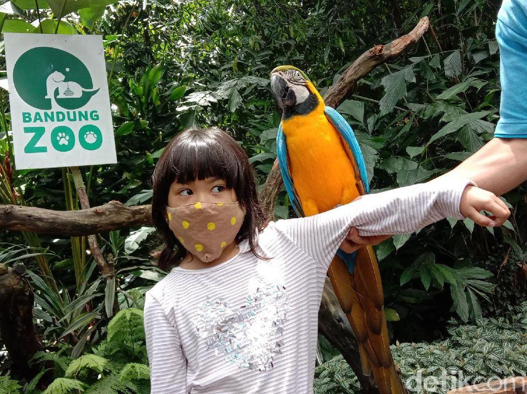 Cuti Bersama, Bandung Zoo Perketat Protokol Kesehatan