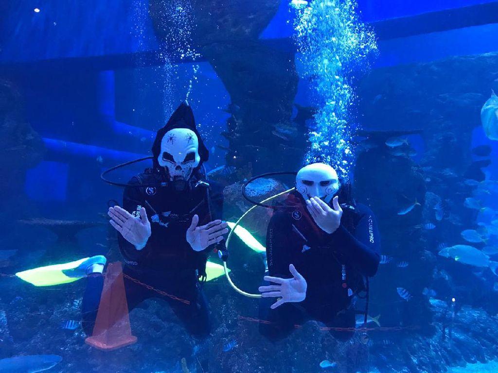 Cuti Bersama, Jakarta Aquarium dan Dufan Tebar Promo dan Atraksi Menarik