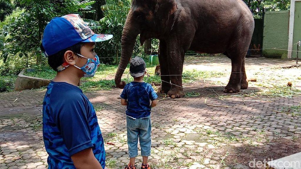 Long Weekend, Kebun Bintang Bandung Perketat Protokol Kesehatan
