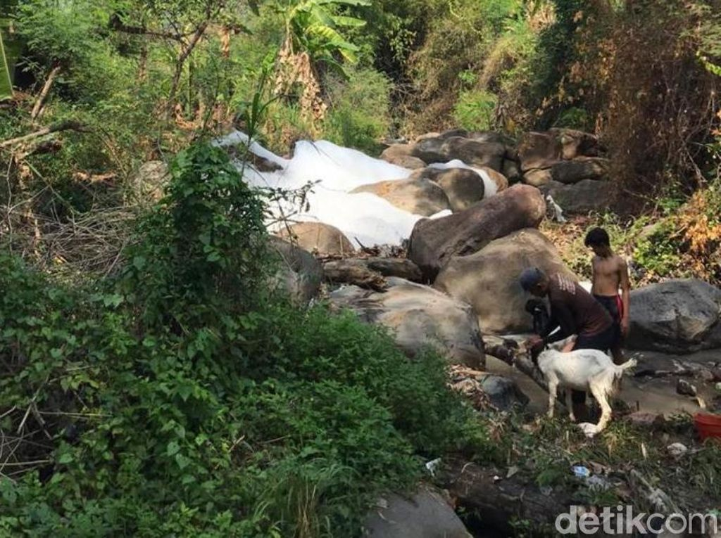 Busa yang Cemari Sungai di Pasuruan Berbahaya dan Beracun, Warga Was-was