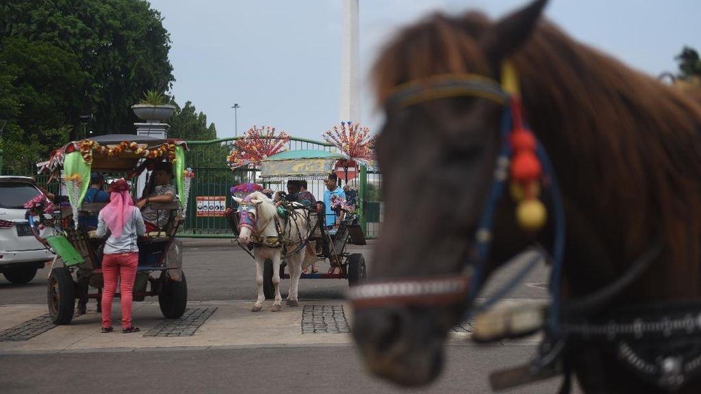 Nasib Kusir Delman Ibu Kota di Tengah PSBB Transisi-Libur Panjang
