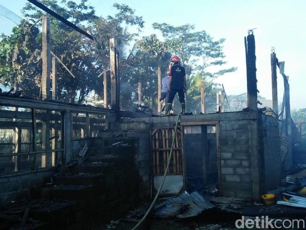 Kandang Peternakan di Blitar Terbakar, 6 Ribu Anak Ayam Mati Terpanggang