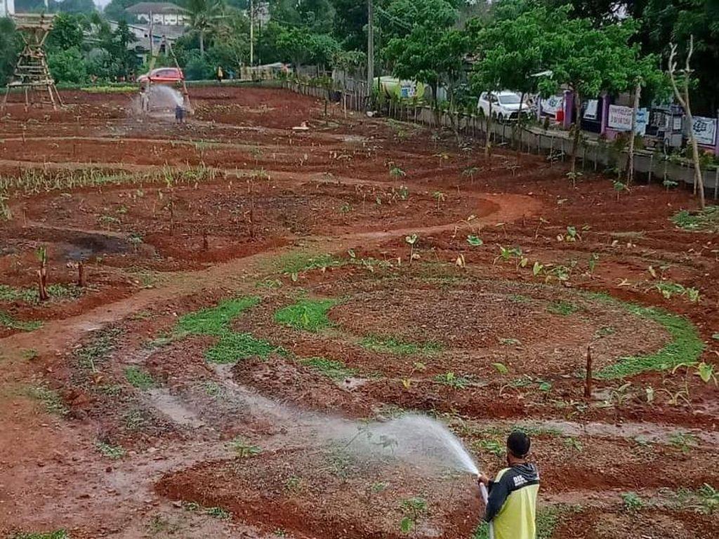 Coba Tengok Eduwisata Baru di Tangerang, Berawal dari Lahan Kosong