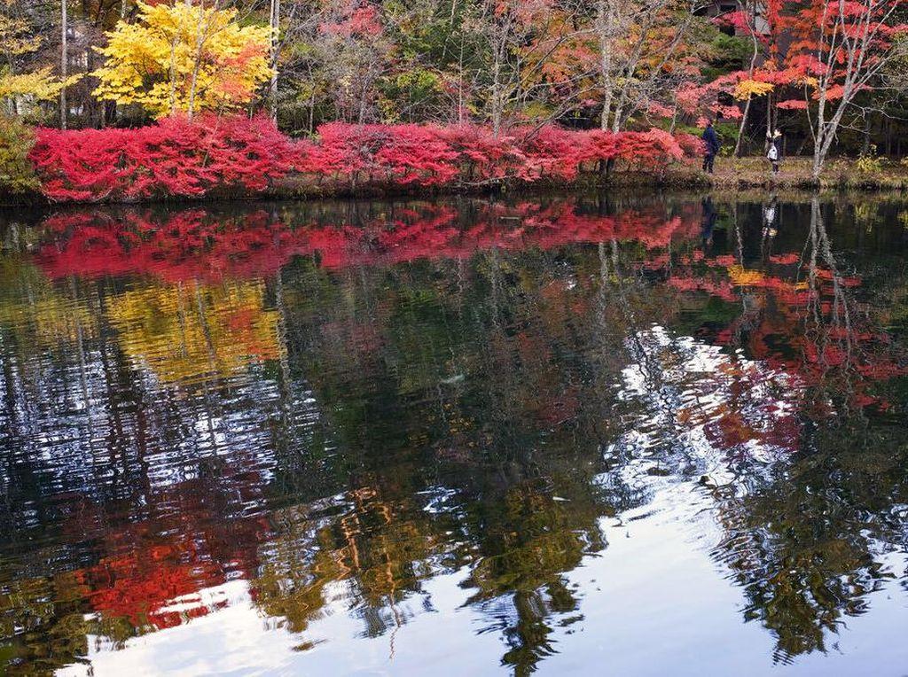 Indahnya Musim Gugur di Jepang