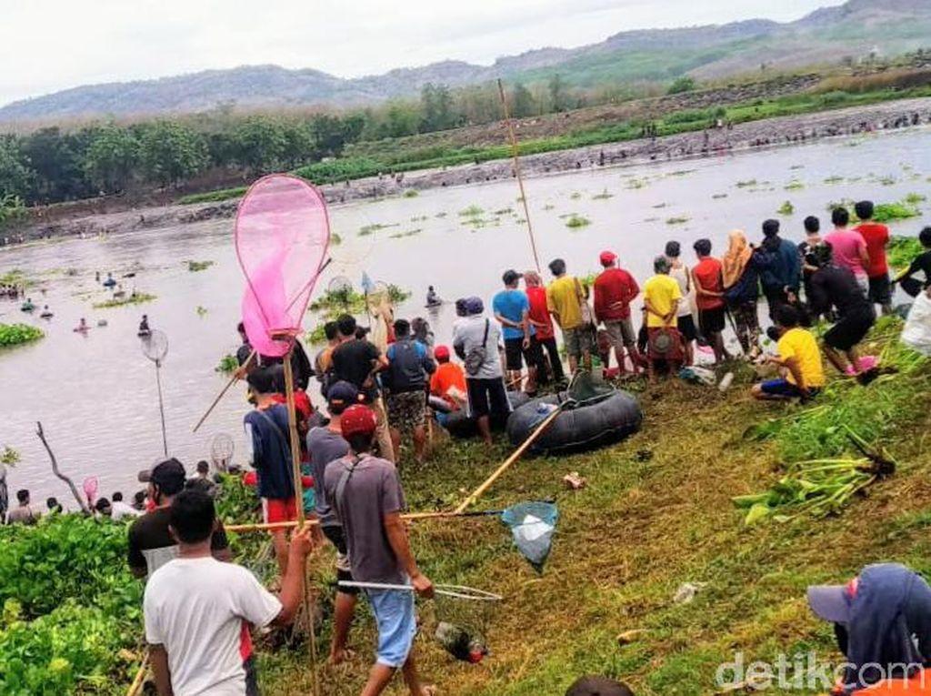 Asatan, Tradisi Warga Bondowoso Berburu Ikan di Bendungan Sampean Baru