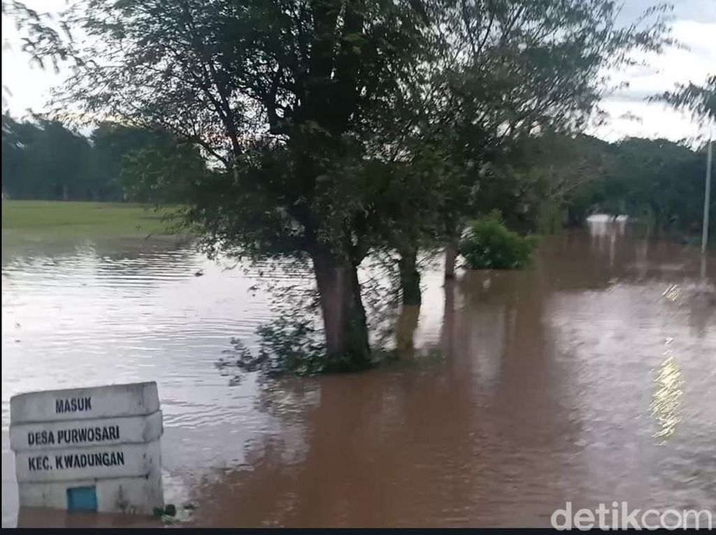 Banjir Ngawi Akibat Luapan Sungai Madiun Meluas Hingga 3 Kecamatan