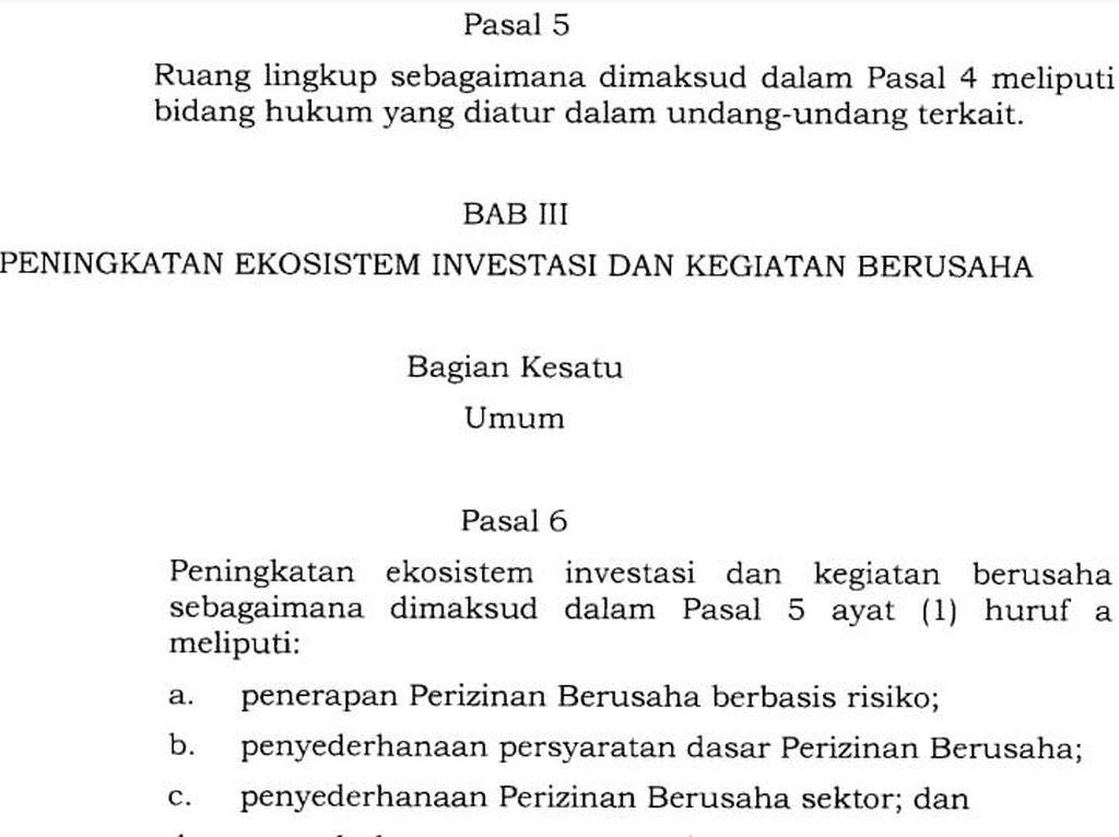 Revisi Salah Ketik UU Cipta Kerja Harus Lewat Pengajuan RUU Perubahan