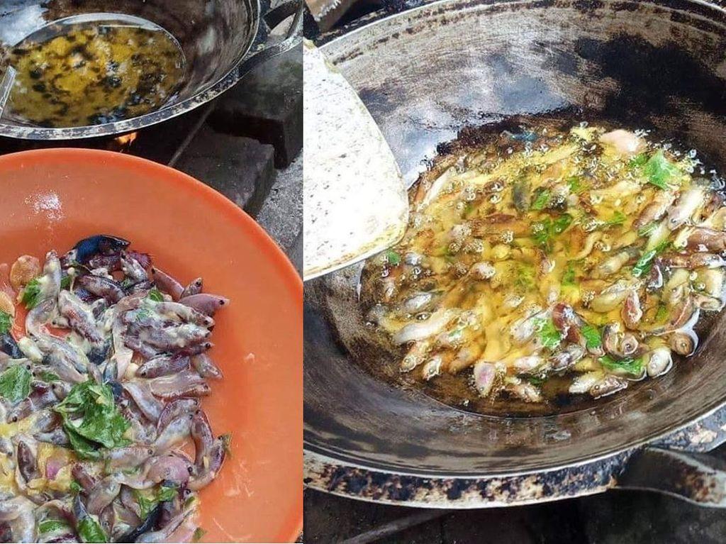 Bikin Nyesek! Puluhan Ikan Cupang Ini Digoreng Krispi Buat Dimakan