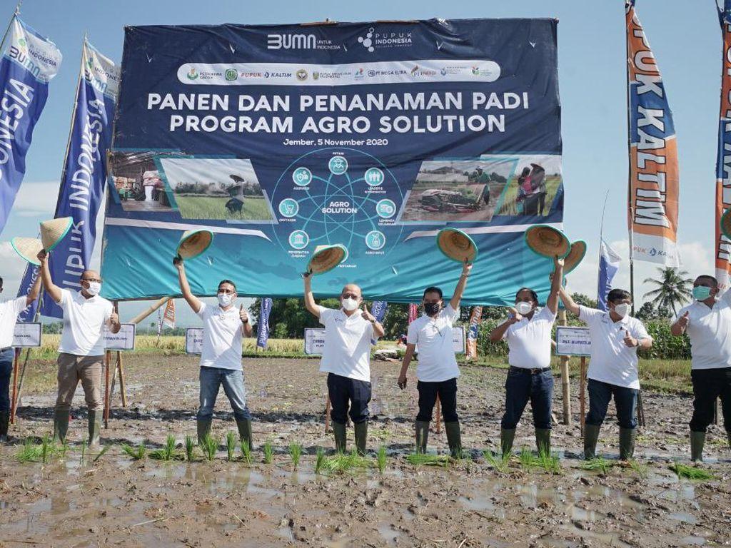 Dorong Produktivitas Petani, Pupuk Indonesia Jalankan Agro Solution