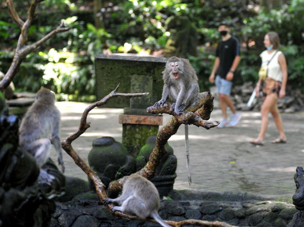 Wisata Bali Belum Pulih, Jawa Barat Siap Bantu