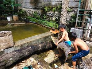 Bocah Kembar di Bandung Barat Ini Berenang Bareng Ular-Buaya!