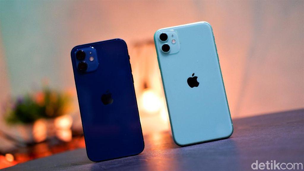 Mending iPhone 12 atau iPhone 11?