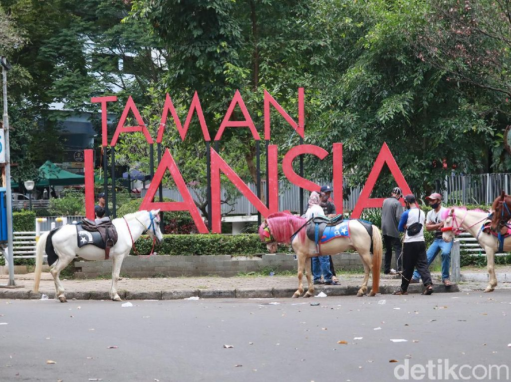 Foto: Wisata Naik Kuda Seru Keliling Bandung, Ini Tempatnya