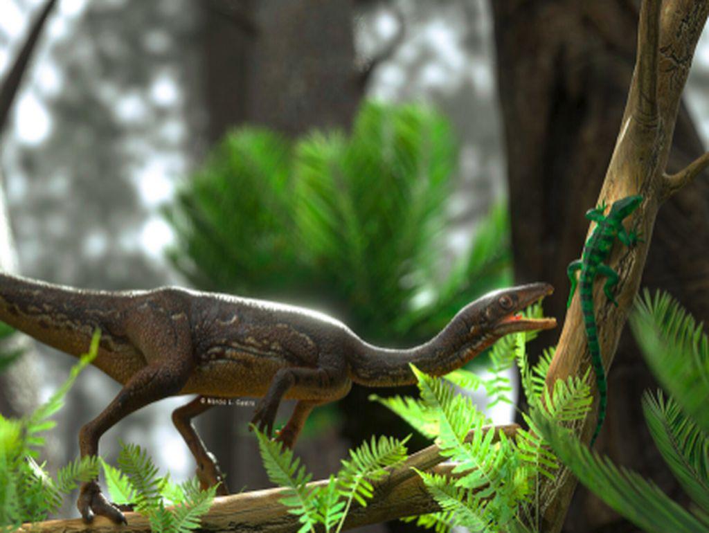 Pertama Kalinya Ada Rekonstruksi Sempurna Otak Dinosarus