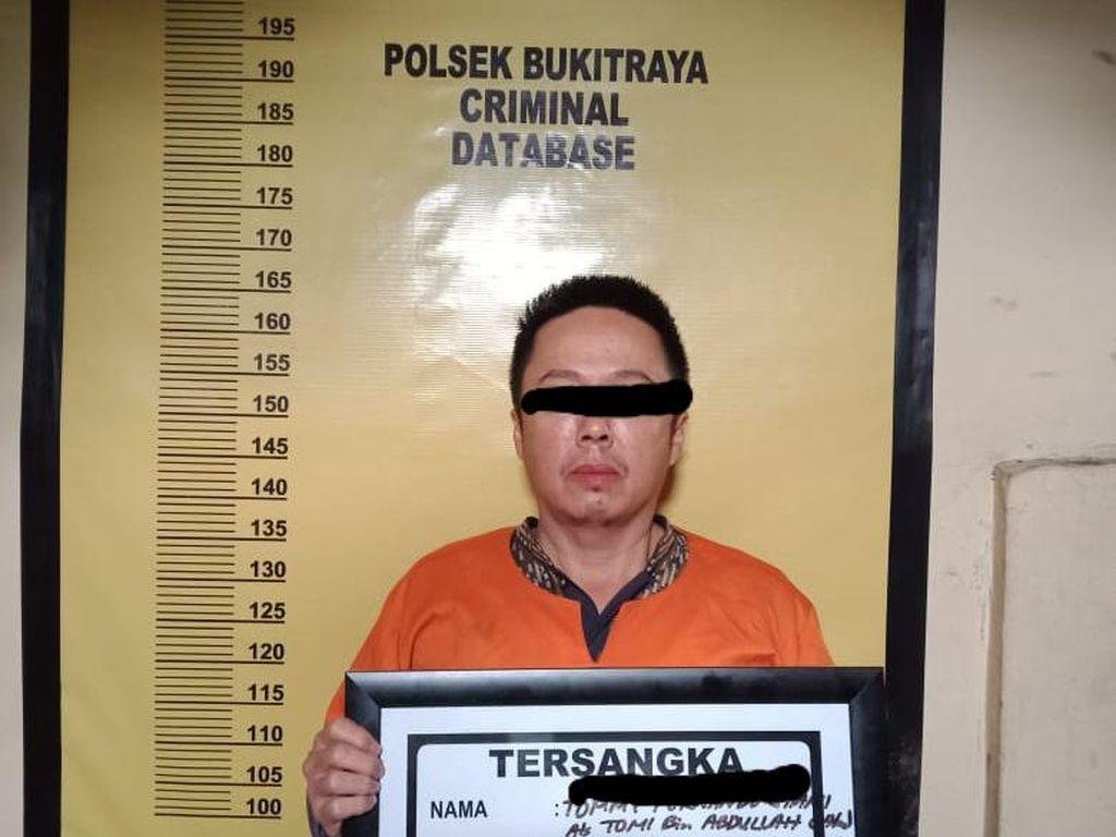 Tebang 83 Pohon di Jalanan Pekanbaru, Pengusaha Reklame Ditangkap Polisi