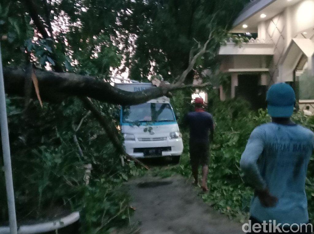 Hujan-Angin Kencang di Kudus, Pohon Tumbang Timpa Mobil