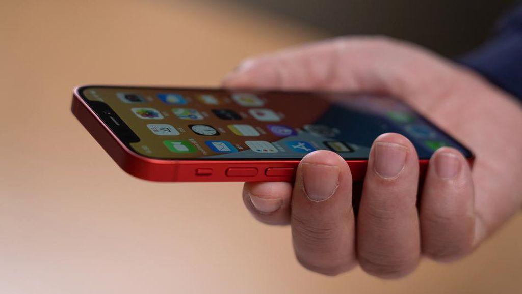Ini Wujud iPhone 12 Mini dan iPhone 12 Pro Max di Genggaman