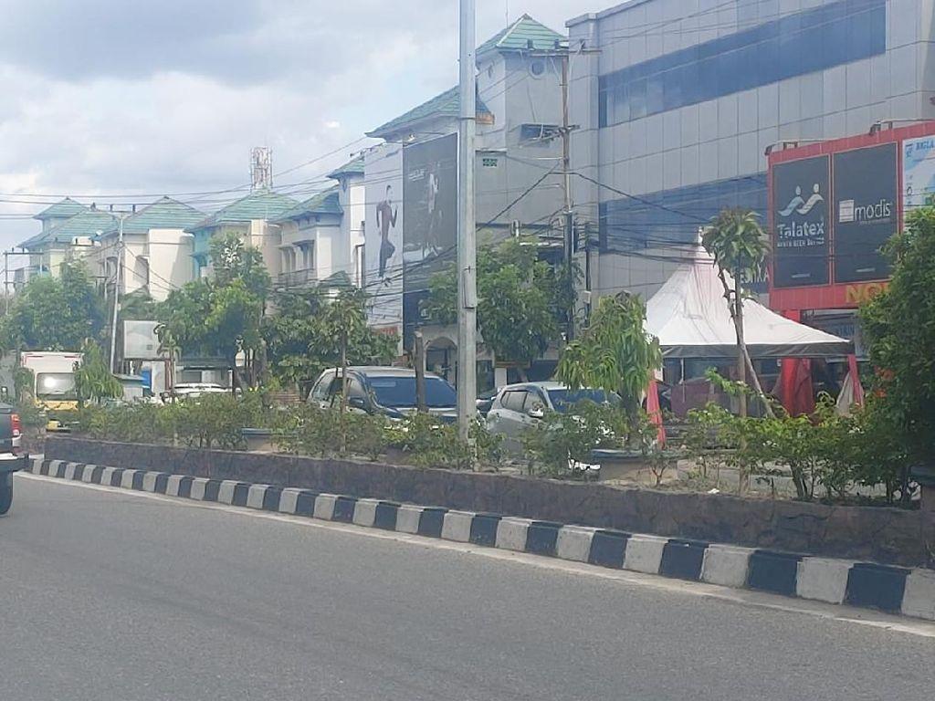 Alasan Reklame Terganggu Bikin Pengusaha Tebang 83 Pohon di Pekanbaru