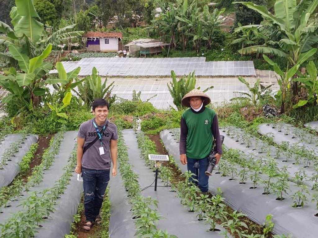Dorong Minat Milenial, Petrokimia Gresik Gelar Jambore Petani Muda