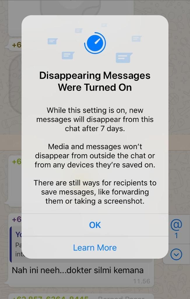 Pesan otomatis hilang di whatsapp